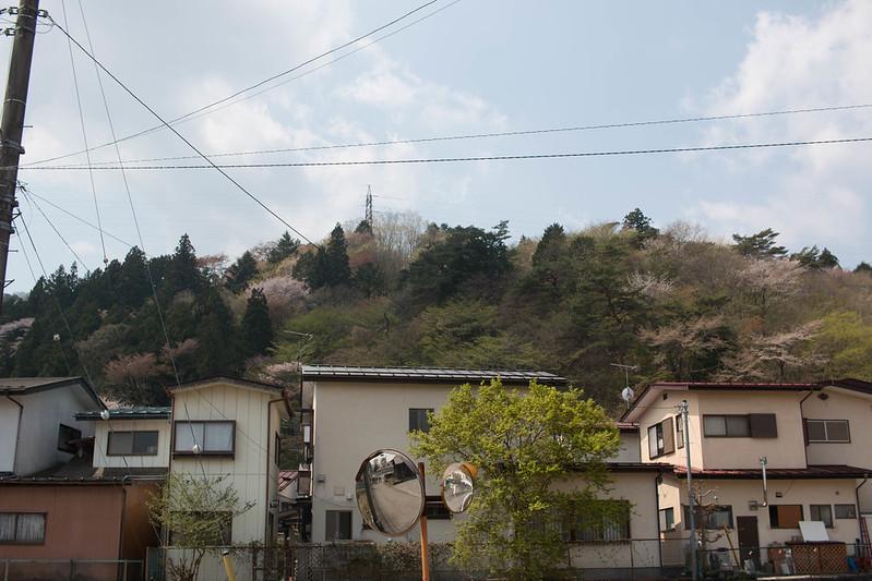 20150425-鳴虫山-0064.jpg