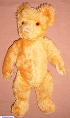 Boril Teddy