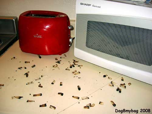 Get Rid Of Roach Foods Even As We Can Find American Roaches Rarely In The  Kitchen