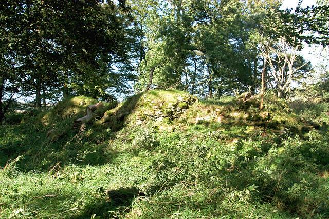 Kincardine Castle (3)