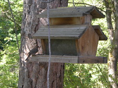 outdoor structure(0.0), outhouse(0.0), wood(1.0), birdhouse(1.0), bird feeder(1.0),
