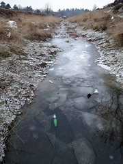 Trench on Heidestein estate
