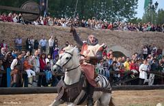 Medievales 2011