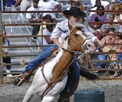 animal sports, rodeo, equestrianism, western riding, event, equestrian sport, rein, sports, charreada, reining, horse harness, barrel racing,