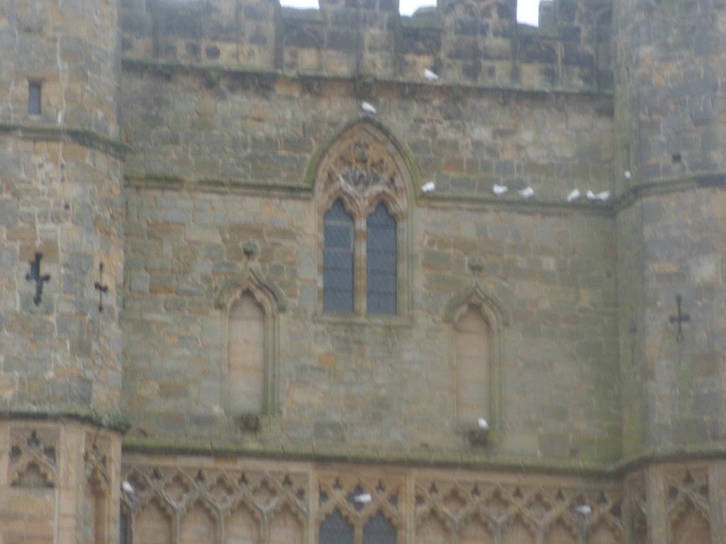 Sheltering doves Battle Abbey Crowhurst to Battle