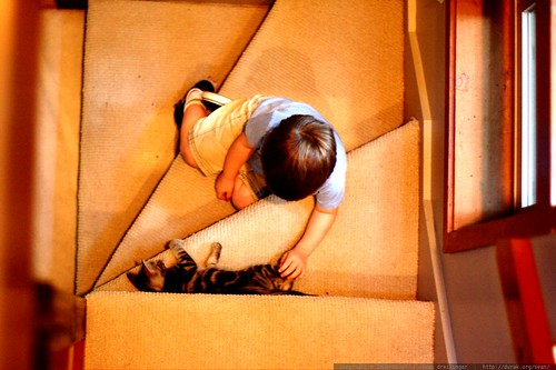 """i found the kitty on the stairs!""    MG 4925"