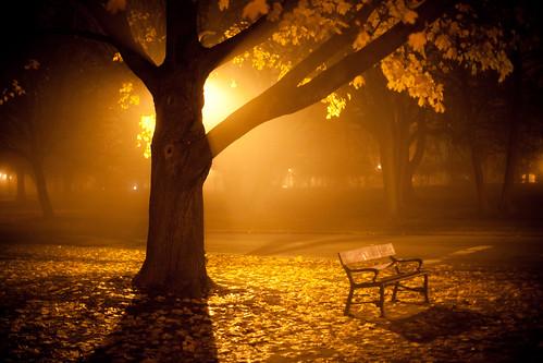 Thanksgiving Fog - Albany, NY - 09, Nov - 02