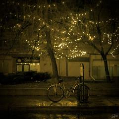 Rainy Night in Montreal