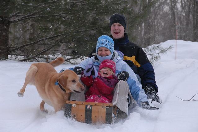 Sylvan Lake Dog Training Montana