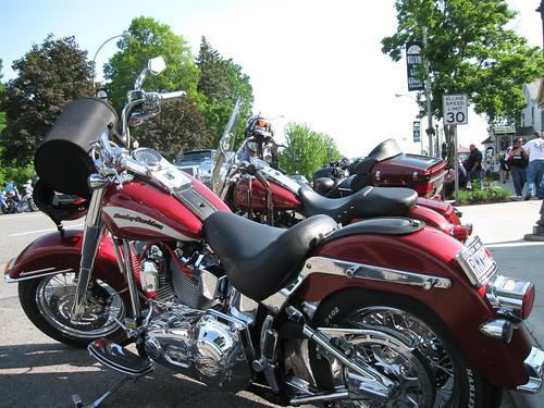 Stylish Harley Davidson