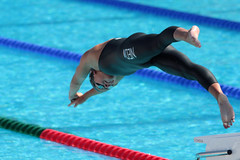 swimming, sports, outdoor recreation, leisure, swimmer, water sport, diving, freestyle swimming,