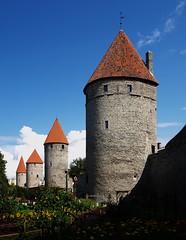 The towers of Tallinn