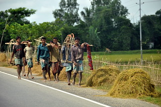 Hardworking people at rural Bangladesh