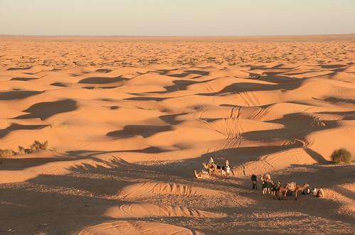 真正沙漠的画手绘画
