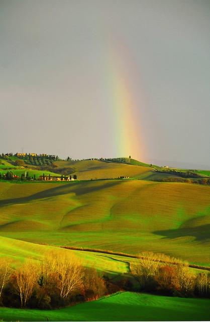 Landscape - Tuscany