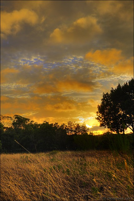 Golden Sunrise, Texas Hill Country