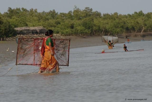 Drag net fishing 1 flickr photo sharing for Drag net fishing