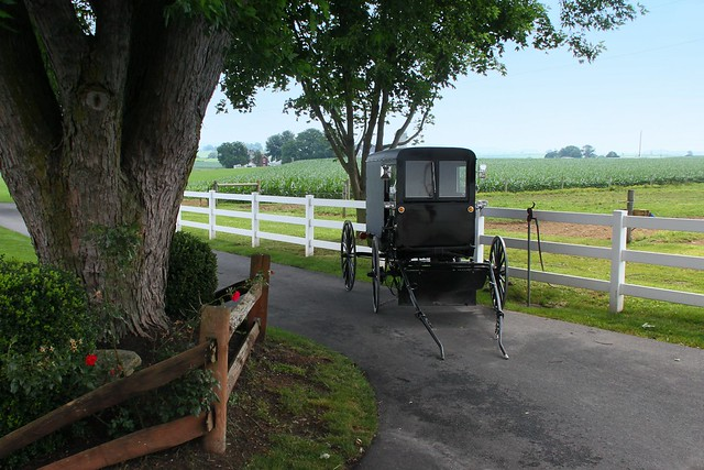 Day on the farm the amish residents of lancaster count flickr