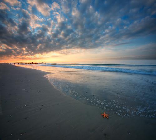 ocean beach sunrise dawn newjersey starfish nj atlantic capemay vertorama