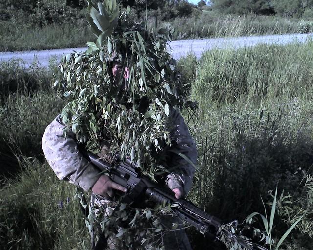Human Bush