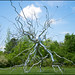 Small photo of Neuron by Roxy Paine