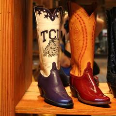 footwear, shoe, cowboy boot, boot,
