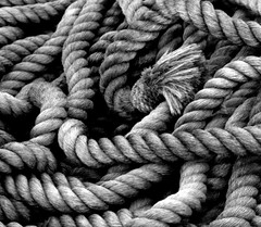 monochrome photography, rope, monochrome, black-and-white,