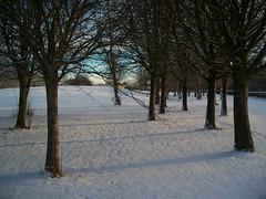 Winter walk 2009