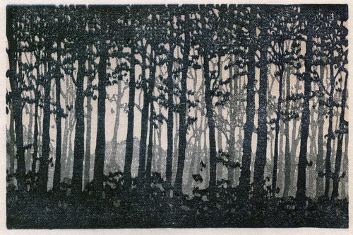 forest reduction print