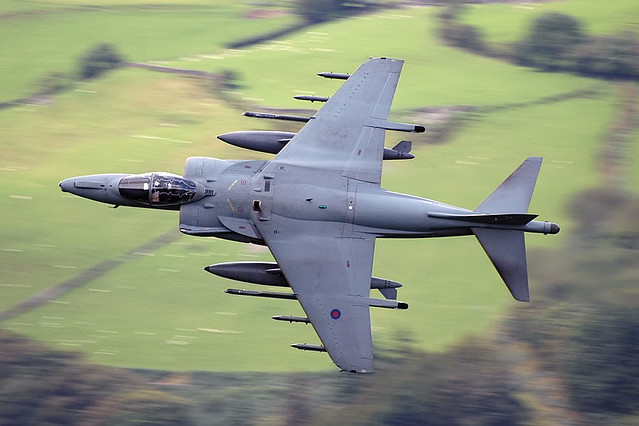Harrier low level