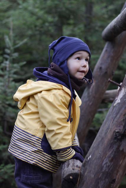 Axel dans la forêt
