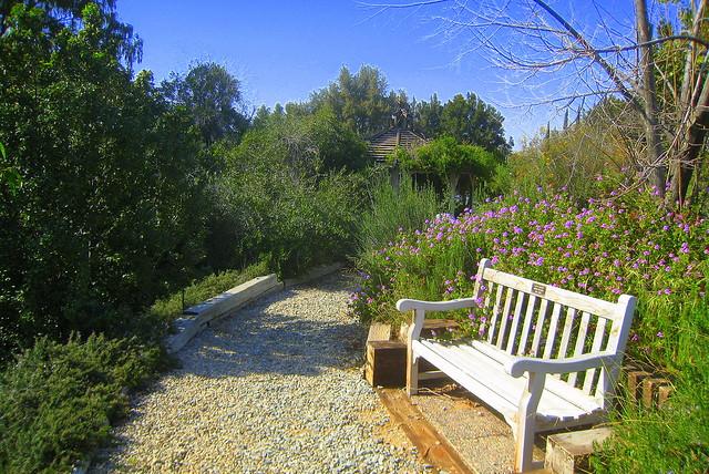 The Botanical Gardens Of U C Riverside University Of Cali Flickr Photo Sharing