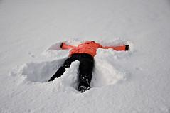 winter storm(0.0), freezing(0.0), footwear(1.0), winter(1.0), snow angel(1.0), snow(1.0), blizzard(1.0),
