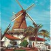 Aruba - The Olde Molen - Windmill