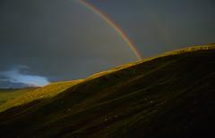 Canolbarth Cymru - Mid Wales