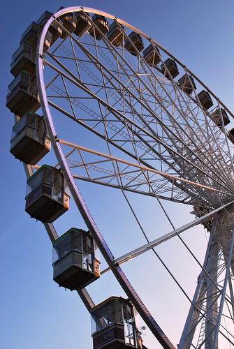 Derby Wheel