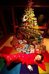 santa's little helper    MG 1540