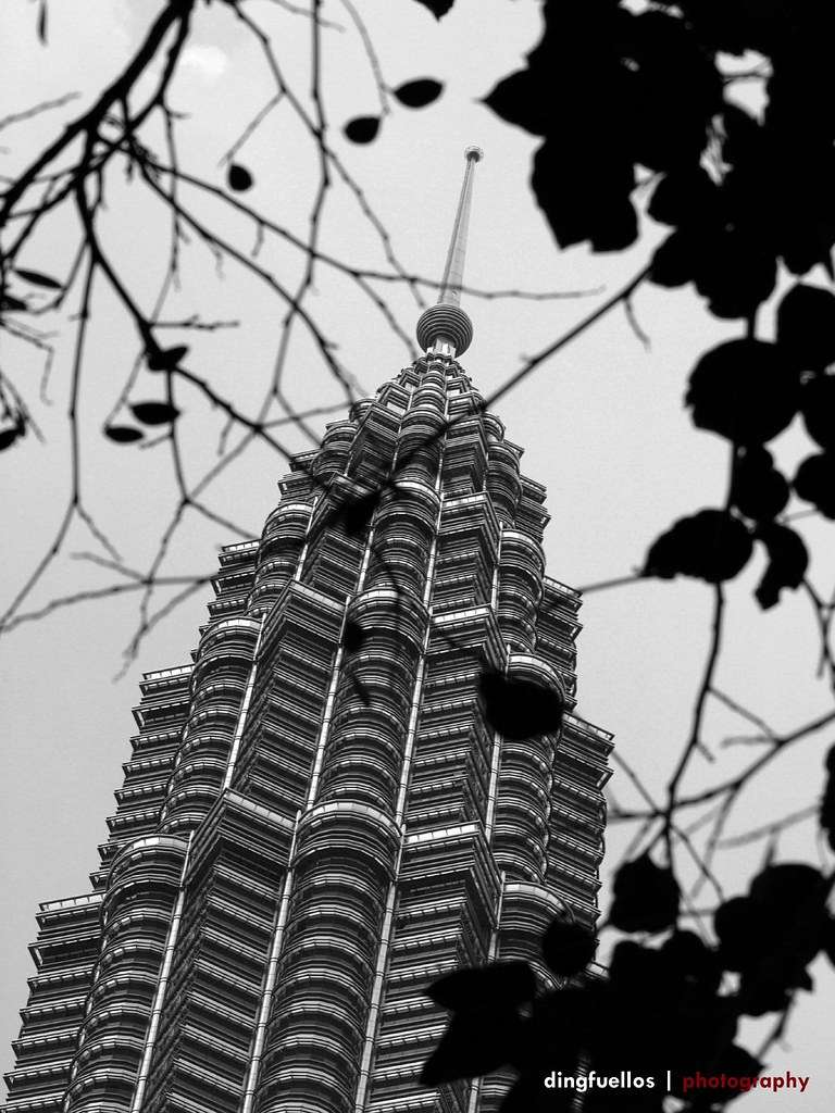 Petronas in black and white
