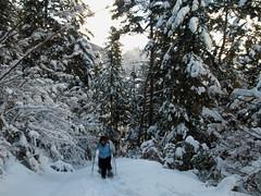 Raquetas de nieve en compañía. Guías Himàlaia Baqueira.