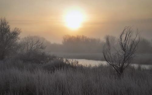 cold fog sunrise dawn washington frost wildlife burbank mcnary refuge notahunter ignoringtheblastsof12gauge peninsulaunit