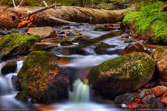 Acadia Brooks & Streams