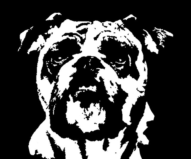 Bulldog Black & White Stencil Dog Art Print | Flickr - Photo Sharing!