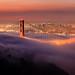 Golden Gate Lights by Rob Kroenert