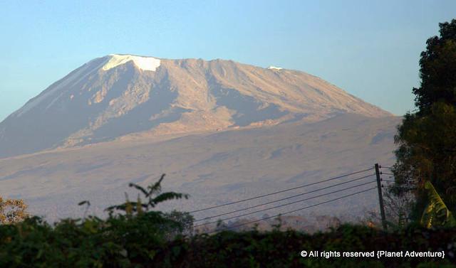 Mount Kilimanjaro - Seen from Marangu Hotel - Tanzania - Africa
