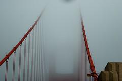 Golden Ghost Bridge