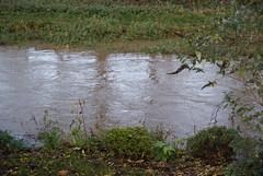 flooded!
