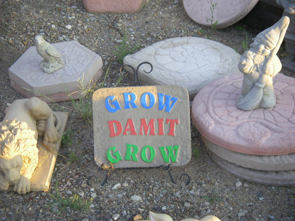 Garden Gnomes On Sale: GARDEN GNOMES FOR SALE : GARDEN GNOMES