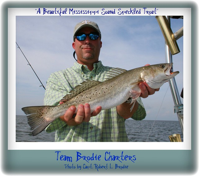 Mississippi gulf coast fishing speckled trout david for Fishing in biloxi ms