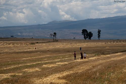 africa kids kenya farming exodus turi riftvalleyprovince ayk kembu tuririftvalleyprovincekenya