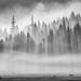 Smokey Sunrise by Jesse Estes